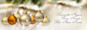 Taverna 800 - Natale e San Silvestro 2013